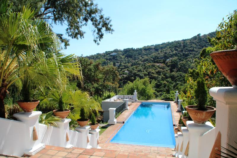 Pool 15meters - Luxury 7 bedroom Villa Nr Marbella - Marbella - rentals