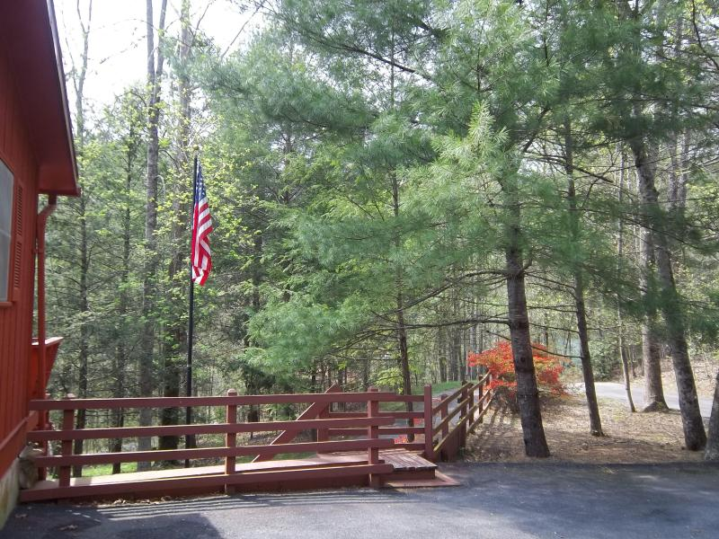 BearFoot Lodge..location, location, location! - Image 1 - Townsend - rentals