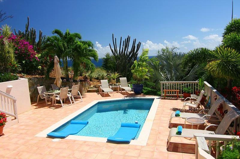 The 18 foot pool is surrounded by a tiled sundeck and beautiful landscaping - Long View - World - rentals
