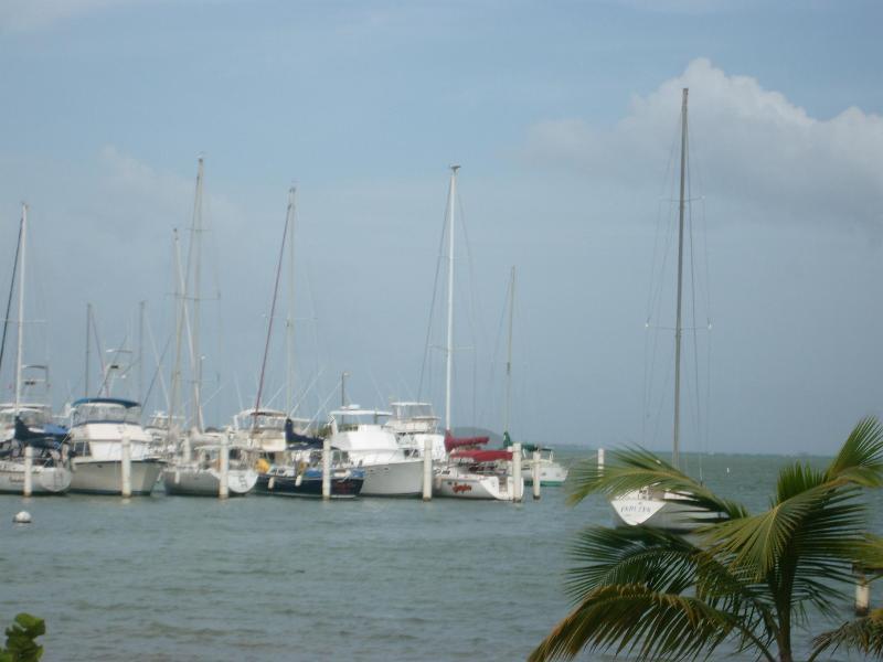 marine view - Peaceful place 5 min to the beach in fajardo - Fajardo - rentals