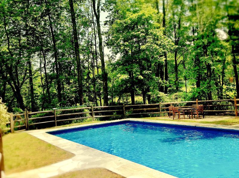 40 x 20 Heated Saltwater pool - Bearsville Retreat Fireplace Hot tub & Pool - Woodstock - rentals