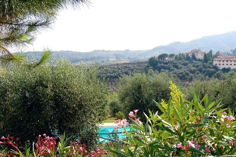 View from garden and pool - Villa Gioia - Enchanging Villa - Breathtaking View - Lucca - rentals