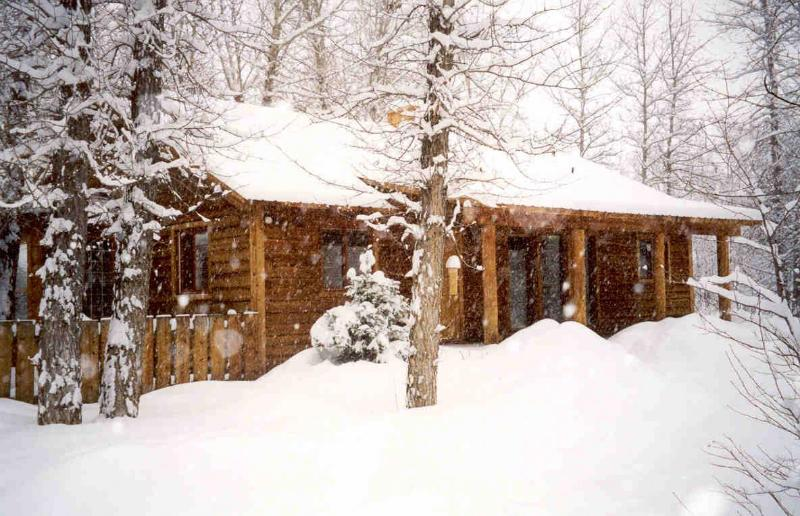 winter cabin - 3 bedroom log home, Driggs Idaho in the Tetons - Driggs - rentals