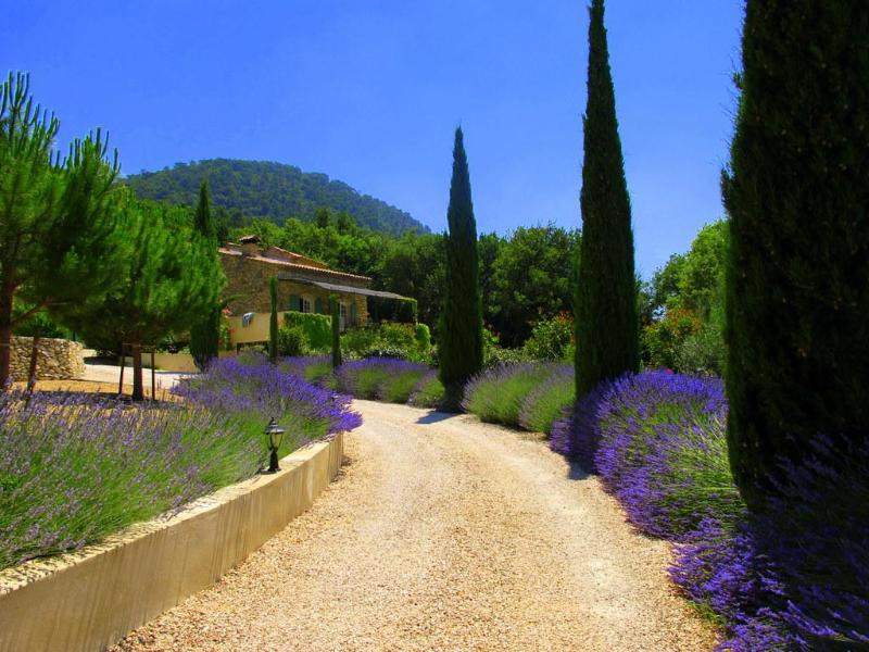 Your first view of the house - Gorgeous 4 Bedroom House- Haut Vaucluse in Stunning Elevated Location - Vaucluse - rentals