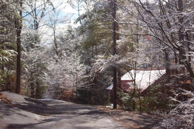 Snowy Manna - Special! Awesome location! River view! GSMNP Manna - Townsend - rentals