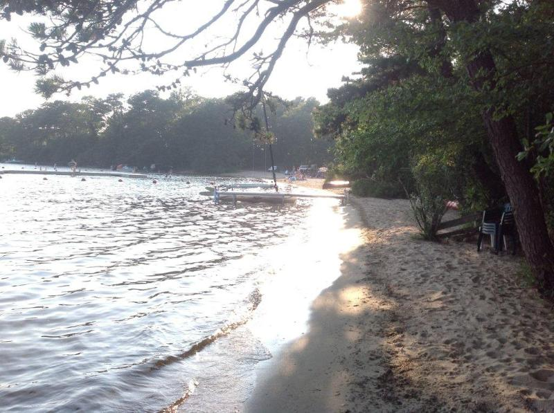 Waterfront and sandy beach on Long Pond. - FORBRE 101527 - Brewster - rentals