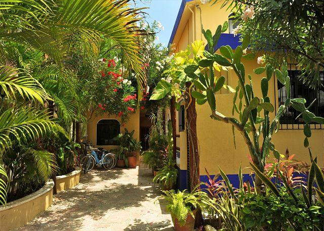 Court yard & entrance. - POPULAR COZY BOUTIQUE STUDIO, PRIVATE PATIO, POOL & HOT TUB, AIR CON, BIKES. - Puerto Morelos - rentals