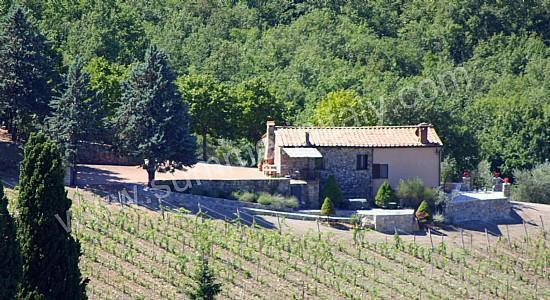 Villa Arnica B - Image 1 - Castellina In Chianti - rentals