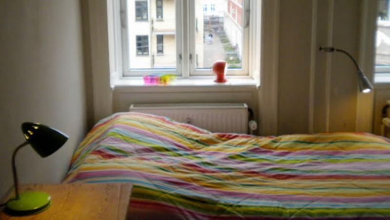 Eskildsgade Apartment - Nice Copenhagen apartment near Central Station - Copenhagen - rentals
