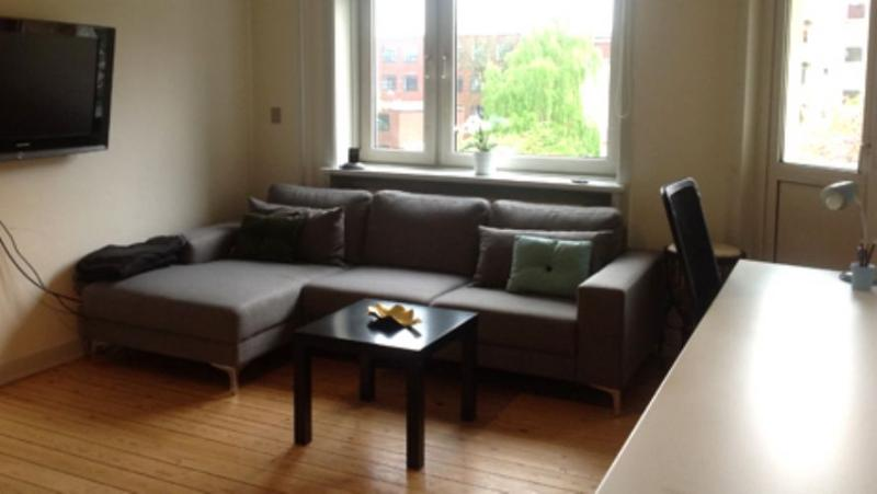 Frimestervej Apartment - Bright Copenhagen apartment close to Bispebjerg station - Copenhagen - rentals