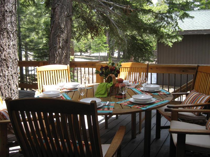Deck view - Tahoe Donner Spacious Cabin in a Pine Forest: WiFi - Truckee - rentals
