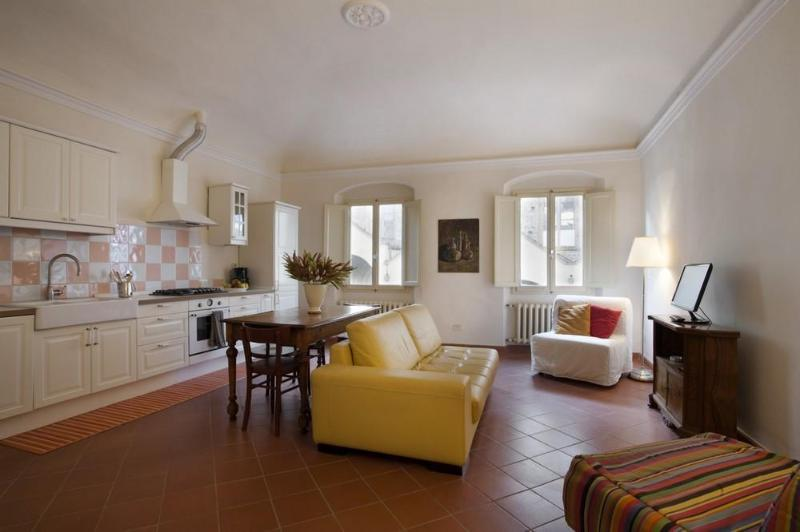 The living room - Spacious apartment facing Santa Croce Church - Florence - rentals