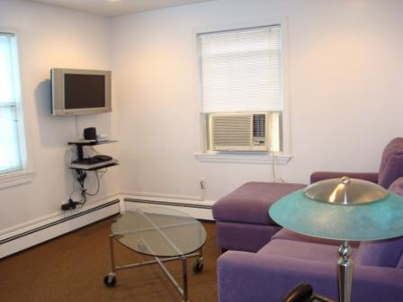 Furnished apartment in Boston and Cambridge area. - Image 1 - Boston - rentals