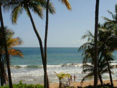 Crescent Cove 100 - Image 1 - Humacao - rentals