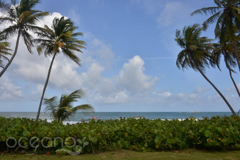 Beach Village 181 - Image 1 - Humacao - rentals