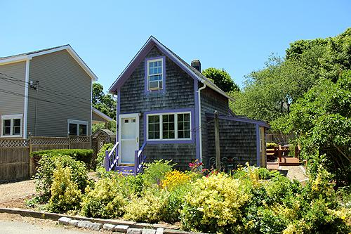 1637 - COZY,CUTE COTTAGE NEAR TOWN & BEACH. - Image 1 - Oak Bluffs - rentals