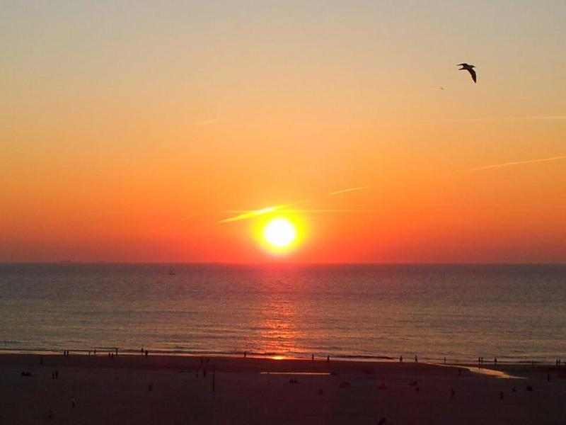 the sunset view from the balcony and living room is just amazing - Scheveningen-The Hague 2BR, 2BA sea view apartment - The Hague - rentals