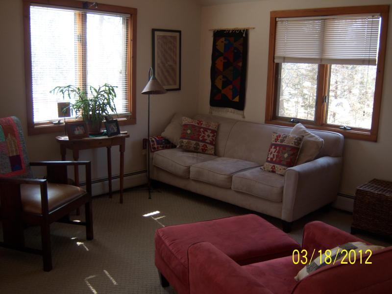 sunny 2nd floor living room - Oak Bluffs Contemporary Summer Home - Oak Bluffs - rentals