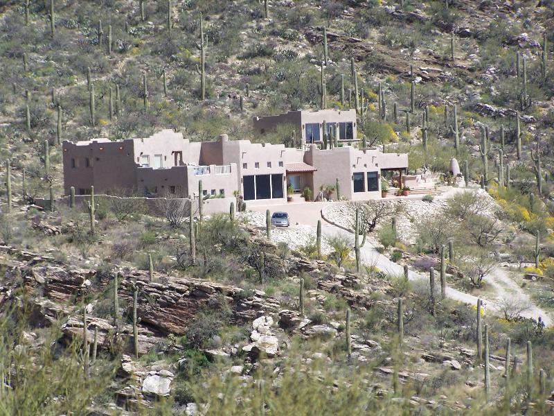 Surrounded by saguaros - Airplane Views of Tucson from Highest Luxury Home - Tucson - rentals
