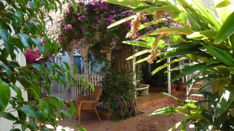 Lounging patio with dual gas/charcoal bbq and big comfy chairs surrounded by Tropical Ambiance - $125/Night, 3 Min to Downtown 3 - Pacific Beach - rentals