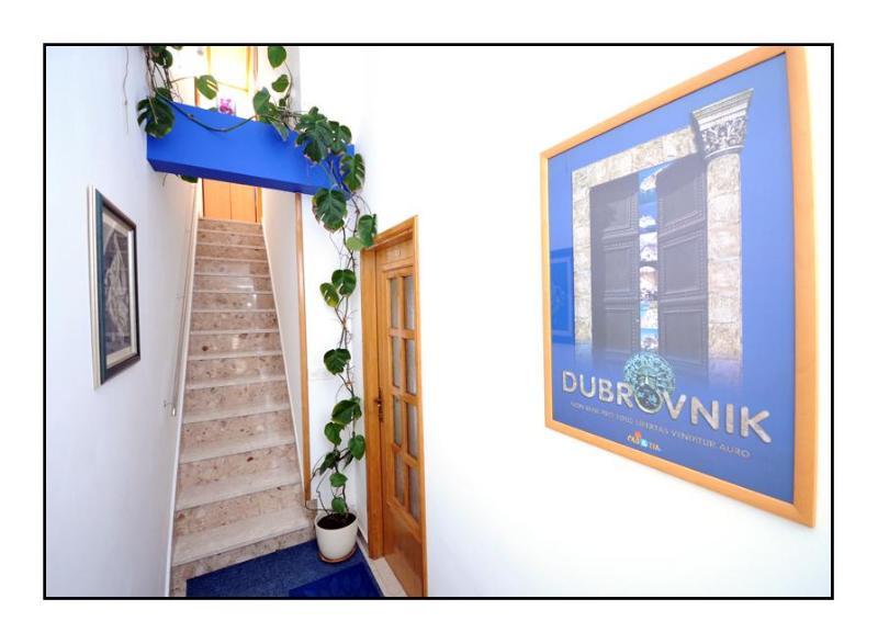 Swallow 1 - Image 1 - Dubrovnik - rentals