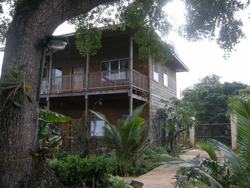 Chez Milady Apartments - Image 1 - Utila - rentals