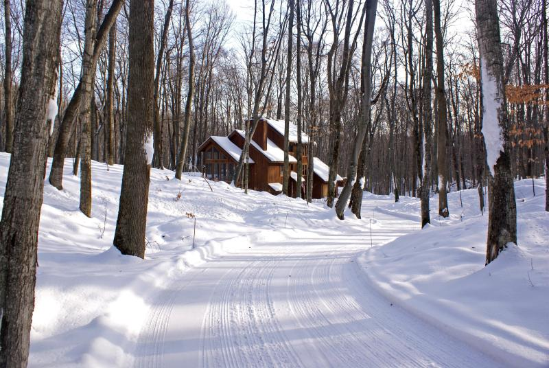 Winter Welcome - Trails End - Harbor Springs - rentals