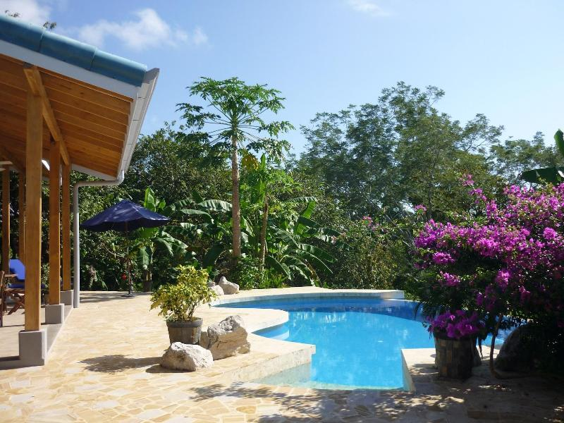 Welcome to Brisa del Pacifico, an eco-friendly home on a lush 2 acre lot - Brand New Eco Villa  3bdrm Brisa del Pacifico - Montezuma - rentals