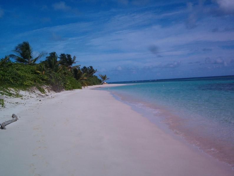 Flamenco Beach looking north. - Casa Mango Lower:A cottage like rental with patio. - Culebra - rentals