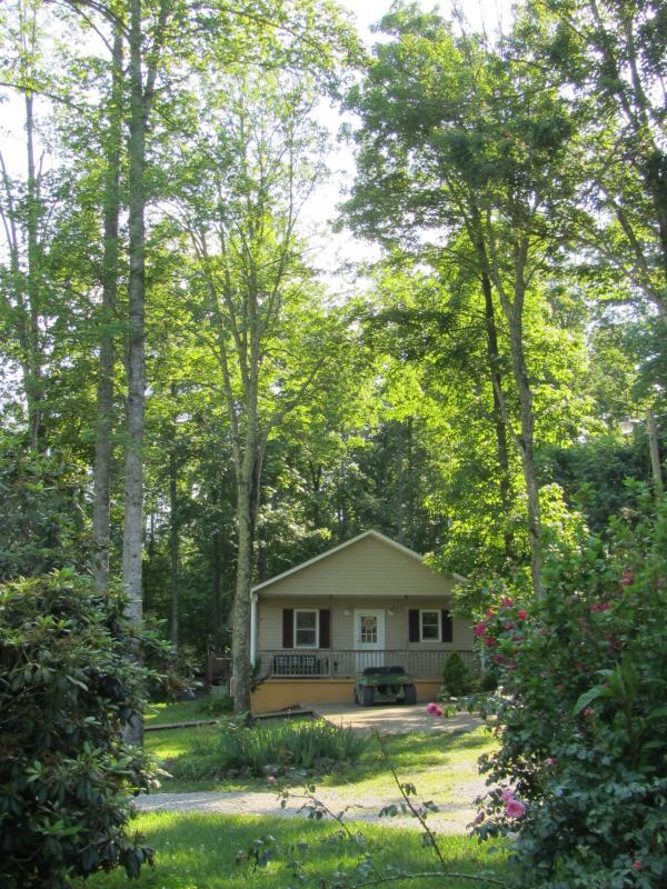 The Lainhart Cottage - Hisel Valley Retreat - Mc Kee - rentals