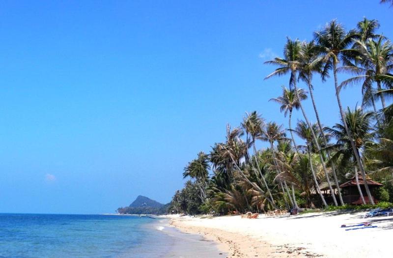 Beach at 40 m - Right Side - Bang Por Beachfront Resort -  Villa PALM - Mae Nam - rentals