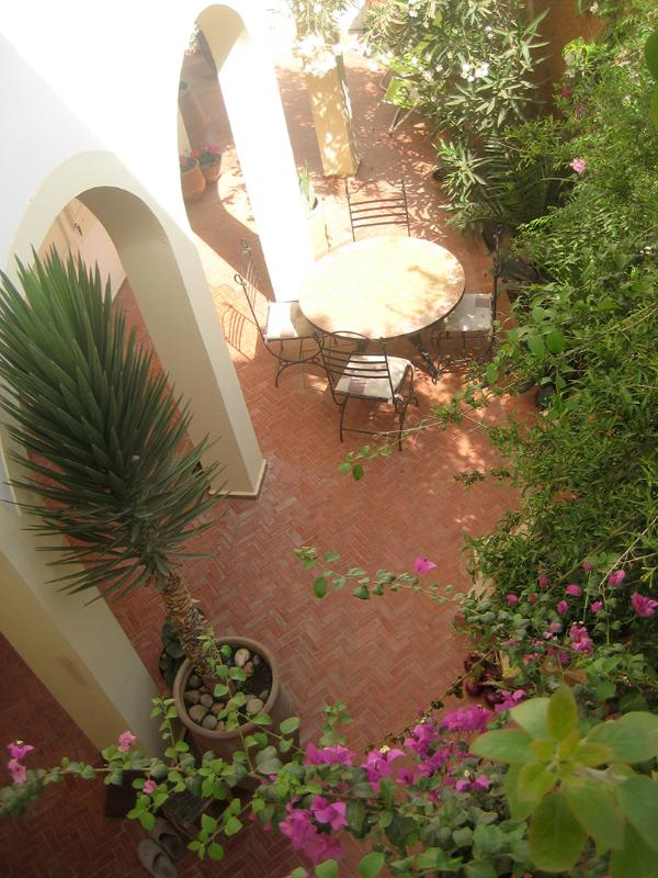 The garden - Tigamee Tumlilt, 3bed villa by sea,Mirleft,Morocco - Mirhleft - rentals