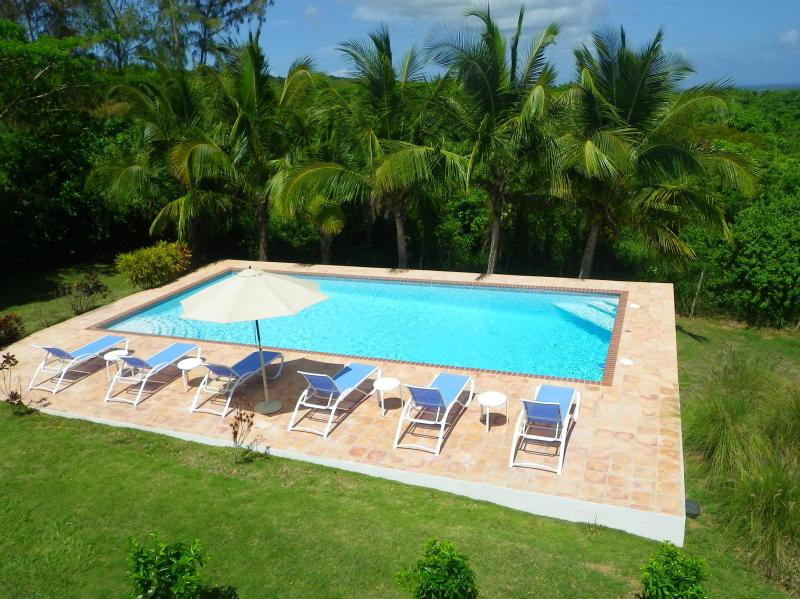 Large Swimming Pool for Lounging, Laps and Cannonballs - La Escapada - Secluded Pool - Peaceful Privacy - Isla de Vieques - rentals