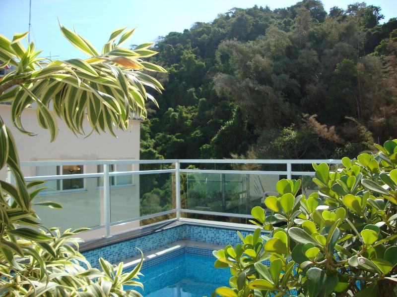 1 bedroom Penthouse with Private swimming pool!!! - Image 1 - Rio de Janeiro - rentals
