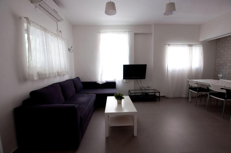 beautiful luxury apartment on the beach - Image 1 - Tel Aviv - rentals