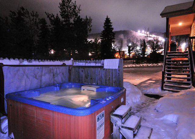 Hot Tub - Warm & Inviting 4 Bedroom Chalet home within walking distance to Wisp & Lake! - McHenry - rentals