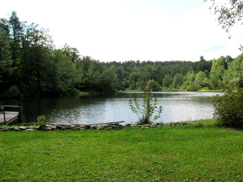 View of Lake from Back Yard - Serene Lakefront Cottage - Becket - rentals