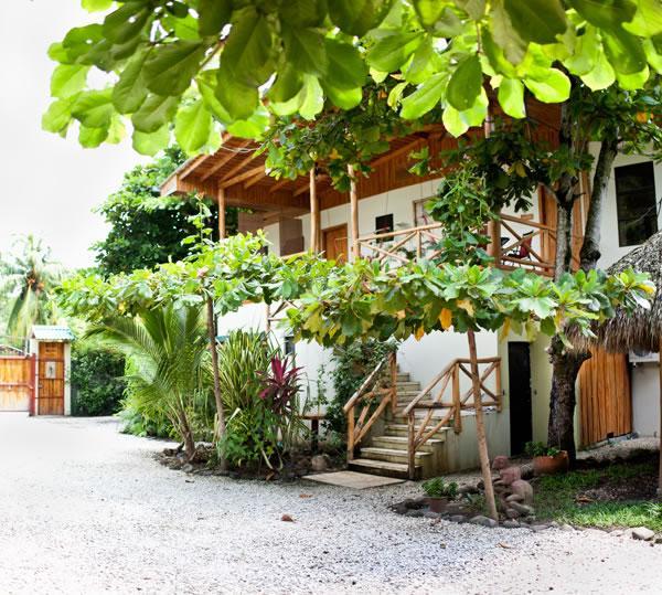 Villas Almendro and Amapola from below - Villas Solar in Santa Teresa- Best Beach in CR - Santa Teresa - rentals