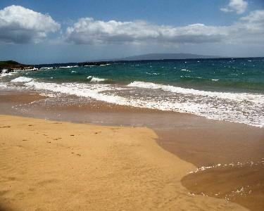 Only steps to Kamaole II Beach from your condo door - DEEP SUMMER DISCOUNTS - Kihei - rentals