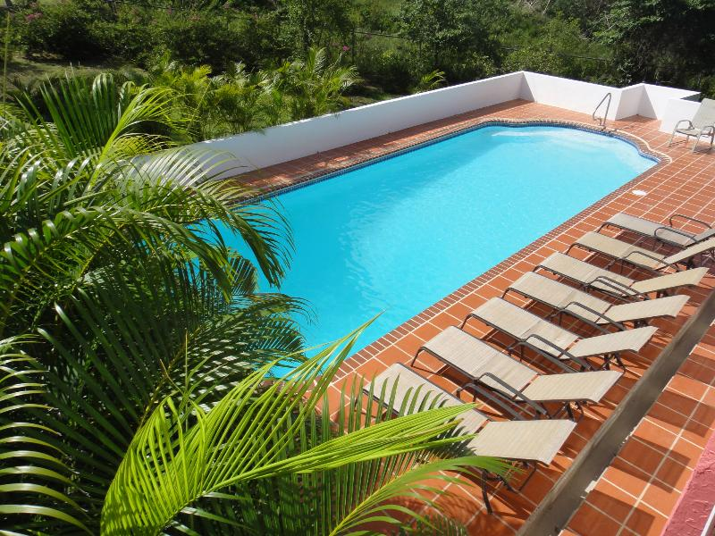 Sandia Beach House with Pool Suite -  Walk to the Beach - Image 1 - Vieques - rentals