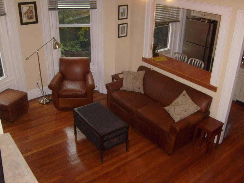 Living Room and Kitchen Serving Window - Luxury Studio in Historic South End Brownstone - Boston - rentals