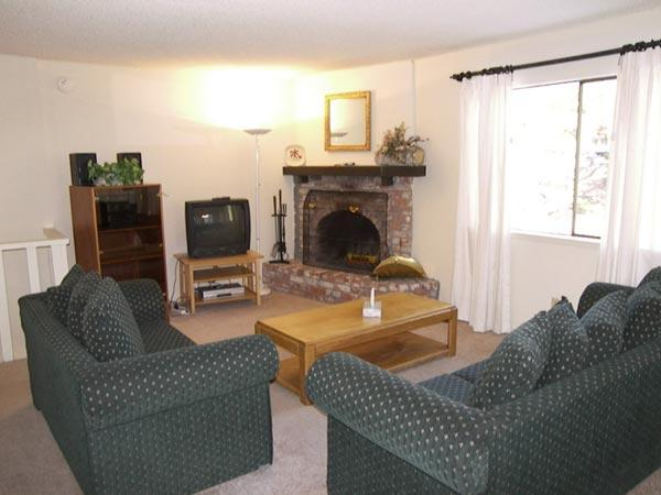 Moritz Ct #1323 - Image 1 - Incline Village - rentals