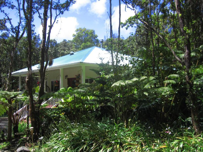 Volcano Hale Mauka your home away from home.  Taken 2014 - Volcano Hale Mauka (A Rain Forest Cottage) - Volcano - rentals