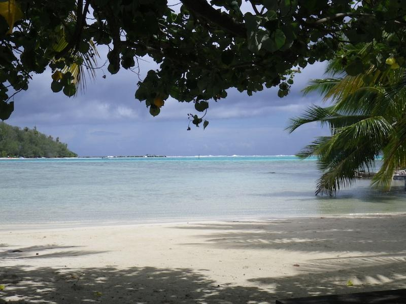 Your beach - VAI Budget Sea View Bungalow with private beach!!! - Moorea - rentals