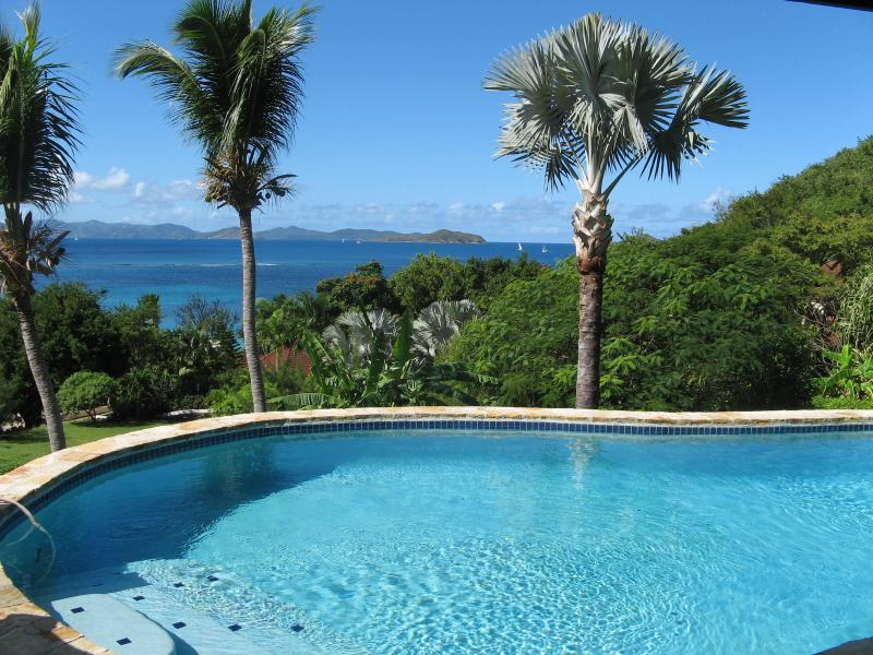 Villa Valmarc's private pool - Virgin Gorda BVI villa 4 bdrm 4 bath with pool - Virgin Gorda - rentals