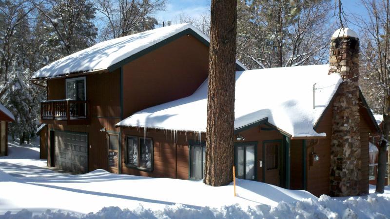 Georgia Peach Winter - Rustic 90yr Old Cabin/Quiet Culdesac Street/HDTV/Hot Tub/Netflix/Forest Trails - Big Bear Lake - rentals