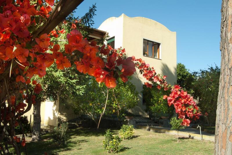 Main entrance - Villa Batiuska - Capri - rentals