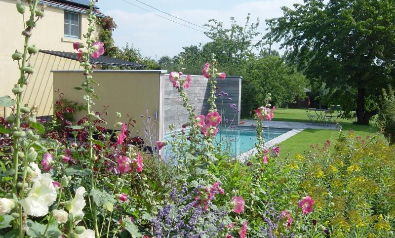 NOUS HOTES, garden and swimming pool - NOUS HOTES charming cottage, pool, panoramic view - Bonlez - rentals
