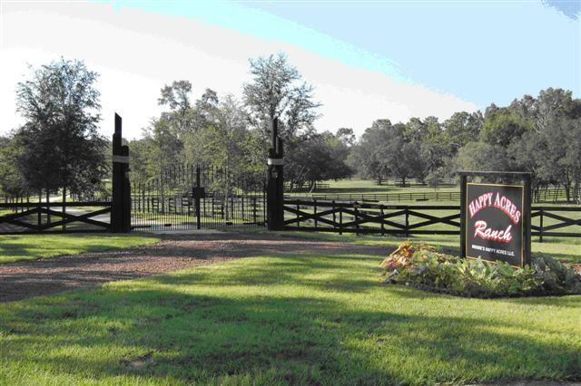 50 miles of trails outside front gate - Sunrise View 3/2 Guest Home on Working Dude Ranch - Dunnellon - rentals