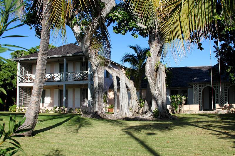 Banyan - Image 1 - Harbour Island - rentals